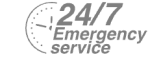 24/7 Emergency Service Pest Control in Barkingside, Hainault, IG6. Call Now! 020 8166 9746